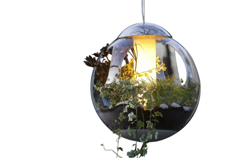 lampe vegetale paris capitale