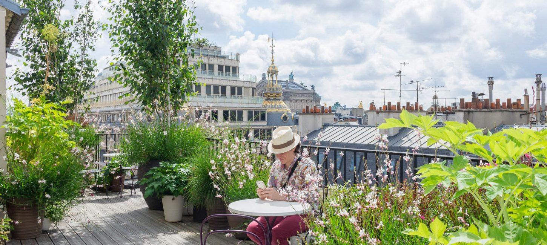 Plant Design The Parisian Jungle Paris Capitale