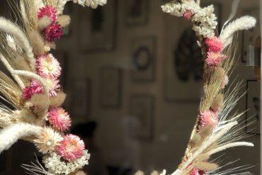Herbarium met les plantes en tableaux