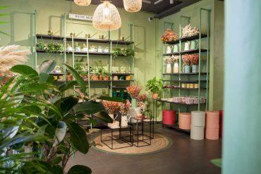 Maison Bergamotte fleurit à Paris !