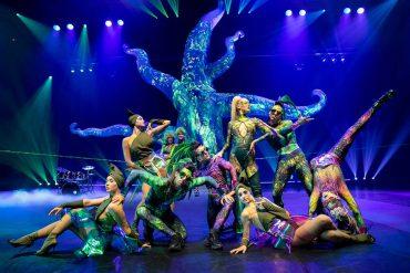 Les plus beaux cirques de Paris en décembre