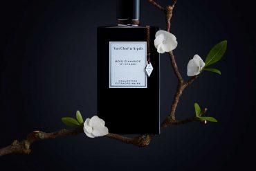 Bois d'Amande un parfum extraordinaire