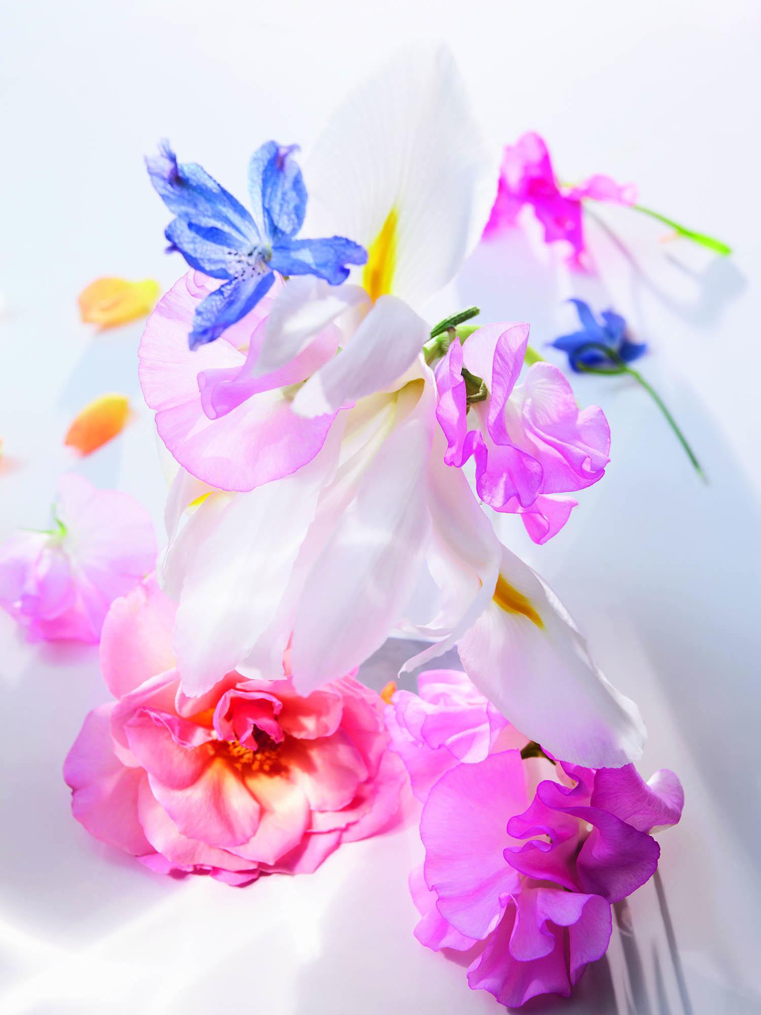 Miss dior parfums fleurs